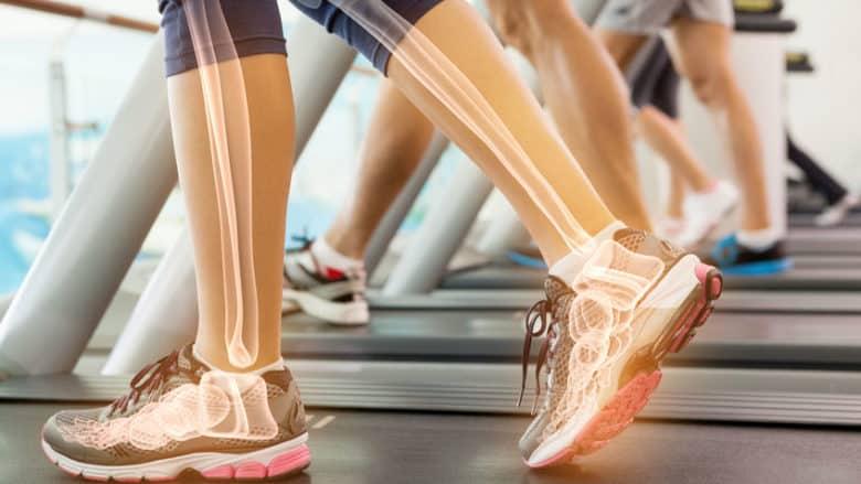 Exercise bones